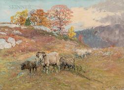 John Joseph Enneking (American, 1841-1916)      Sheep on the Hill